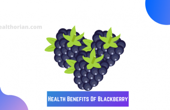 Health Benefits Of Blackberry(healthorian.com.)