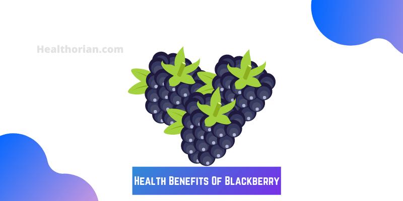 Health Benefits Of Blackberry(healthorian.com.)