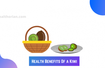 Health Benefits Of a Kiwi(healthorian.com.)