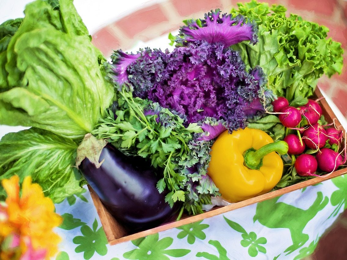 what is nutrition nutrition websites